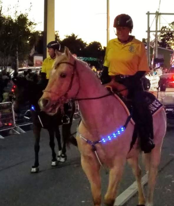 Mounted Patrol Vol