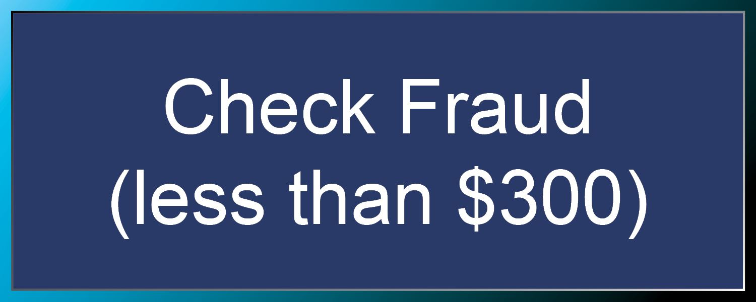 Check Fraud (less than $300)