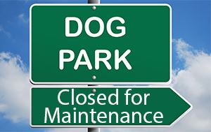 Large Dog Park at Freedom Lake Closed for Maintenance from March 5th until March 23rd